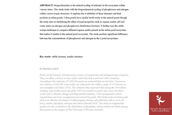 chemistry essay sample UK