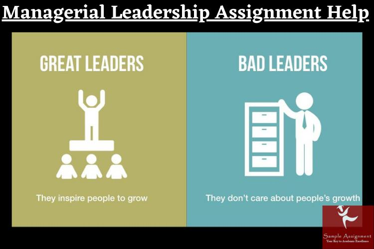 managerial leadership assignment help
