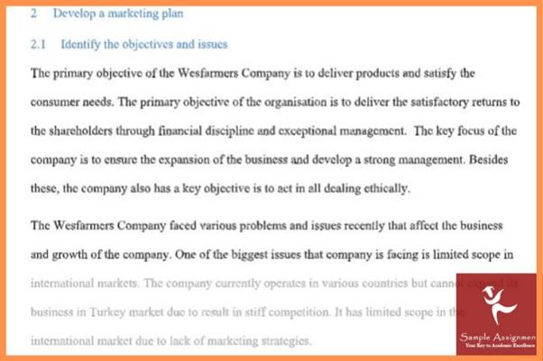 marketing environment analysis assignment sample