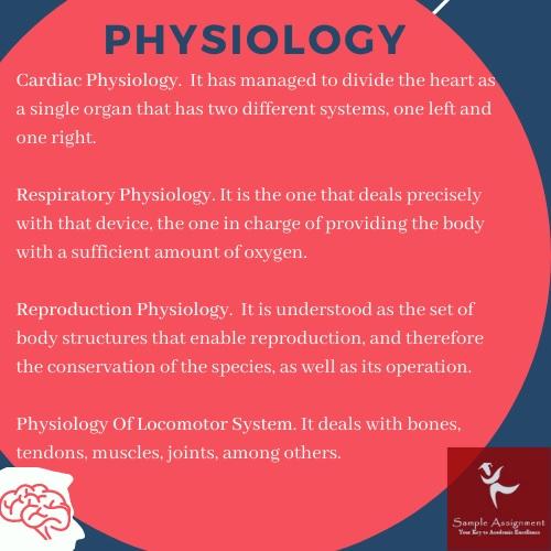 physiology essay help uk