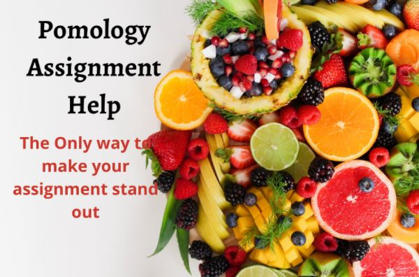 pomology assignment help in australia