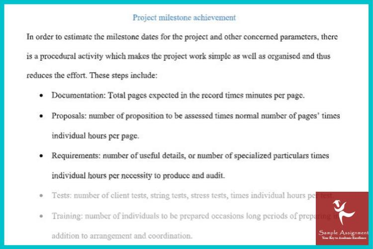 project management plan assignment solution