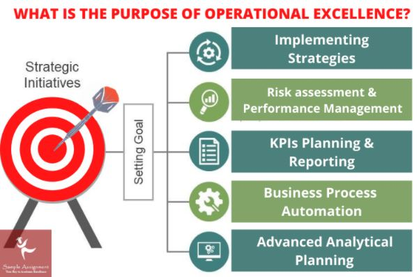 purpose of operational excellence
