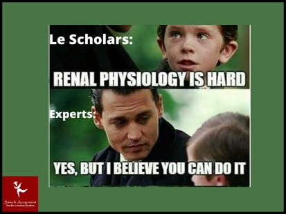 renal physiology academic assistance through online tutoring online