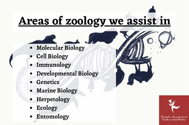 zoology assignment help UK