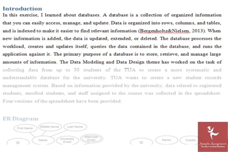 database design fundamentals assignment sample uk