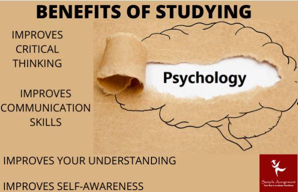 developmental psychology assignment help