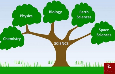 physics academic assistance through online tutoring canada