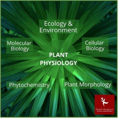 plant science academic assistance through online tutoring australia