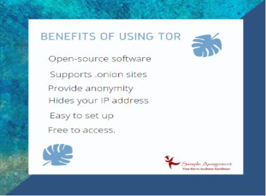 tor network assignment help australia