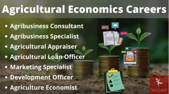 agricultural economics assignment online