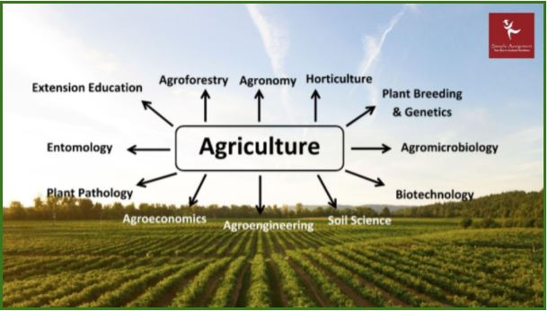 agricultural science assignment help