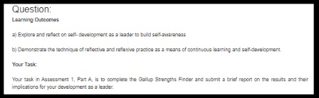 dynamic leadership assignment sample question