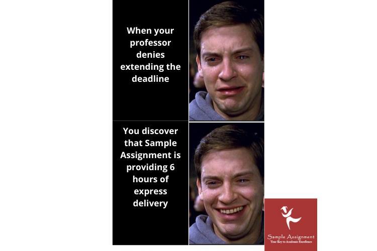 insant academic assistance through online tutoring service