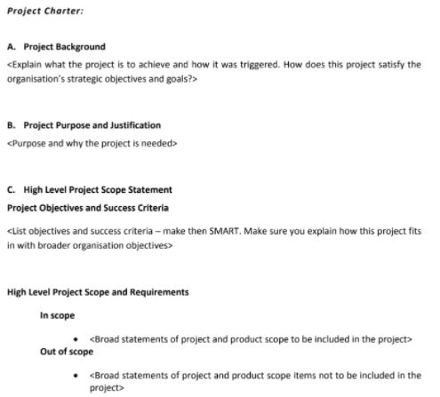 project charter assignment sample