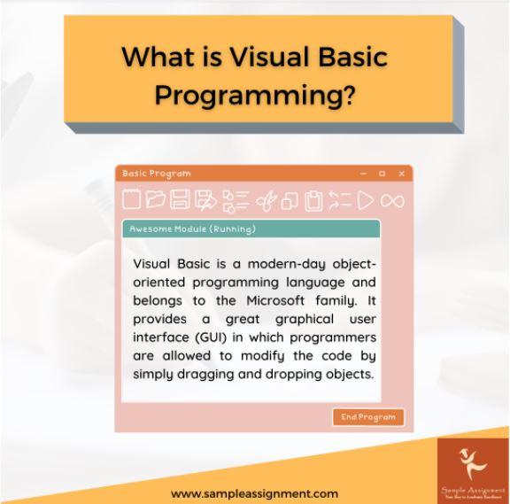 visual basic programming Assignment Help