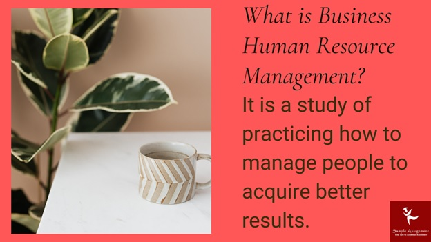 what is business human resource management