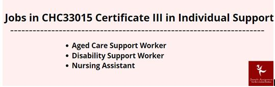 CHC33015 Certificate III In Individual Support Workbook Assessment Answer