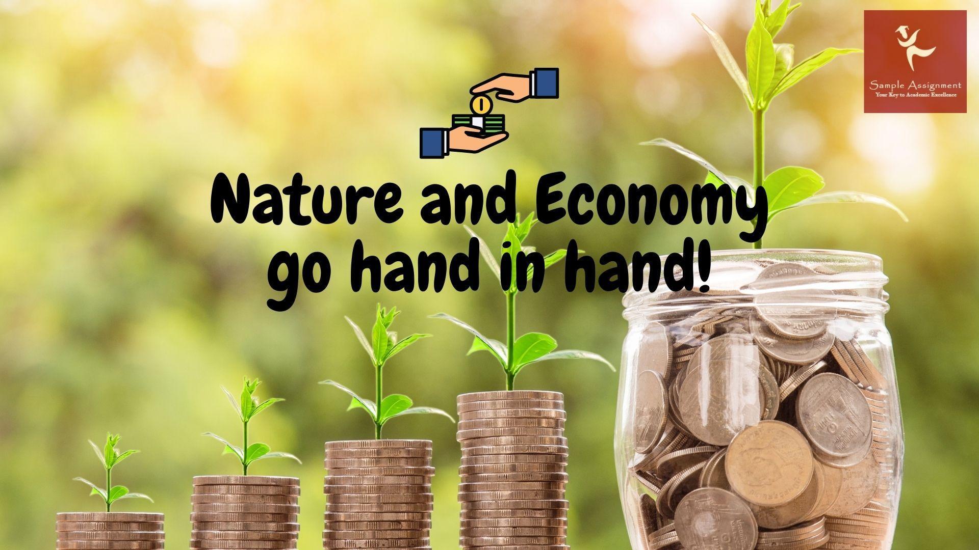 Forest Bioeconomy Sciences academic assistance through online tutoring