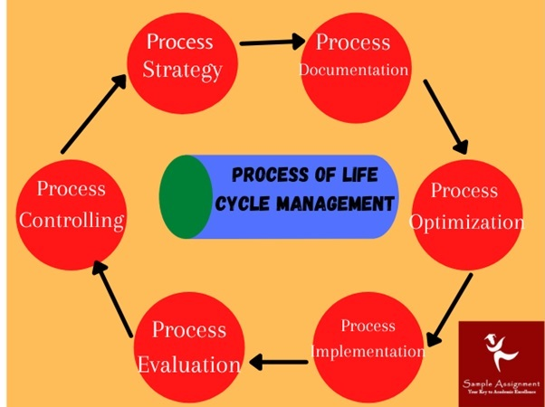 Life Cycle Management process