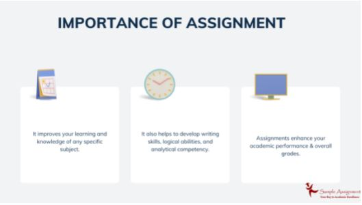 being social assignment