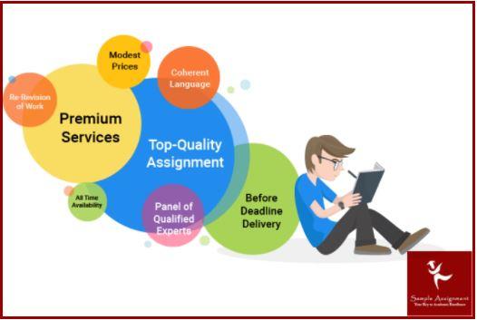 case management assignment online