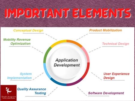 important elements of application developer homework help