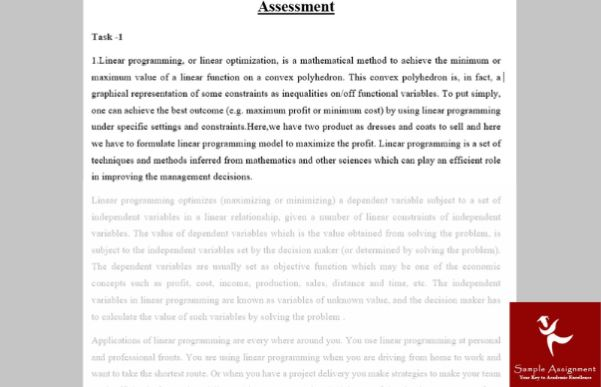 linear programming assignment sample online