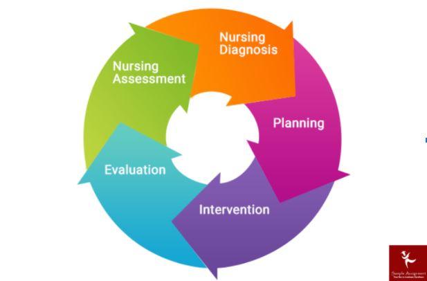 online primary health care nursing assignment