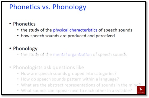 phonology assignment sample online
