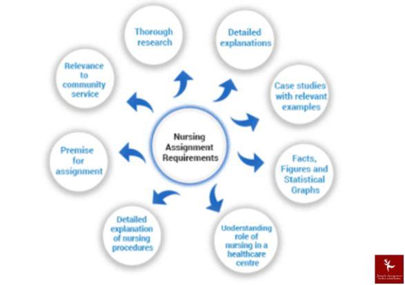 primary health care nursing assignment online