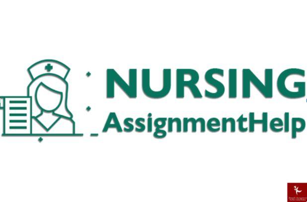 primary health care nursing assignment