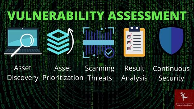 vulnerability assessment online