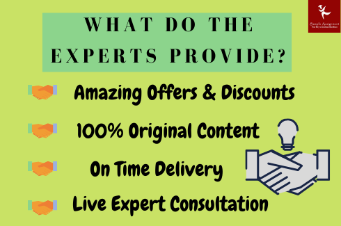 what do the expert provide assignmnet