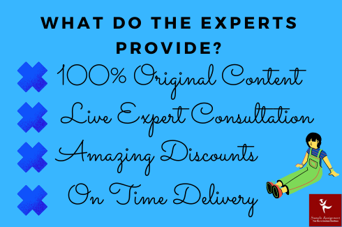 what do the expert provide