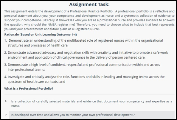professional practice portfolio in nursing sample