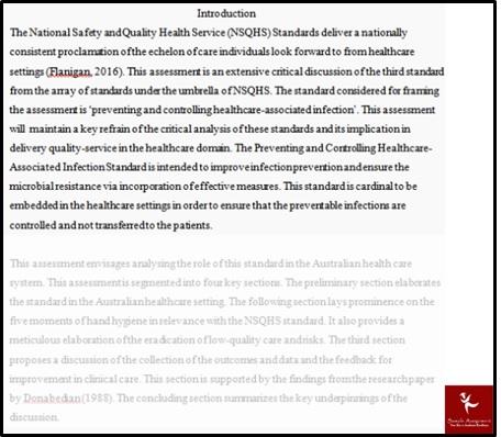 professional practice portfolio in nursing assessment