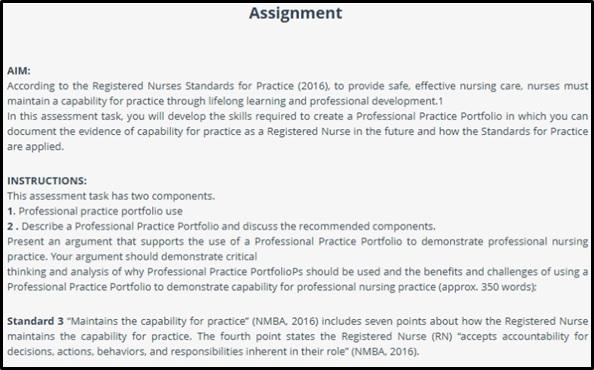 professional practice portfolio in nursing samples