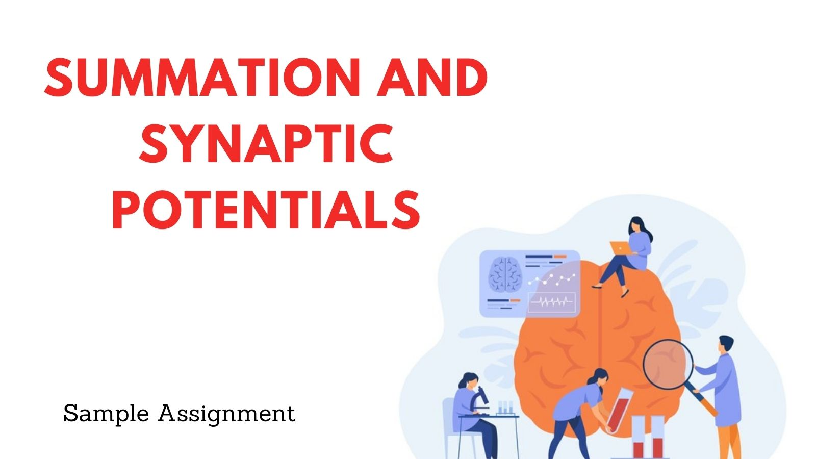 Summation And Synaptic Potentials