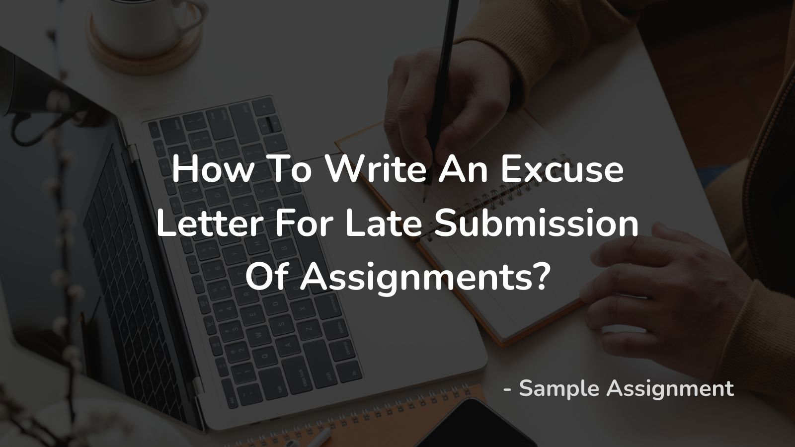 Excuse Letter For Late Submission Of Assignments