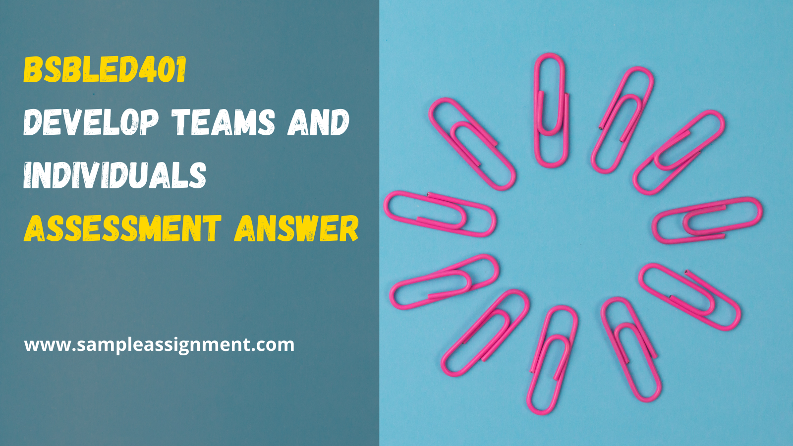 BSBLED401 Assessment Answer